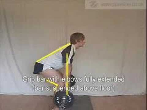 Sports Training - Weight Training - Bent Over Row Image 1