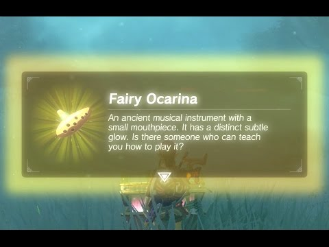 Mr Hero - Fairy Ocarina in the Lost Woods