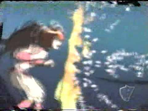Misc Cartoons - Dragon Ball Gt - Versão Portuguesa Pt-pt