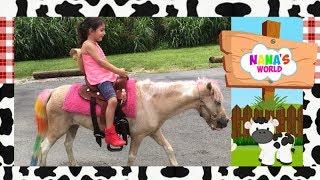 Brincando Passeio Pequeno Ponei My little Pony Rosa