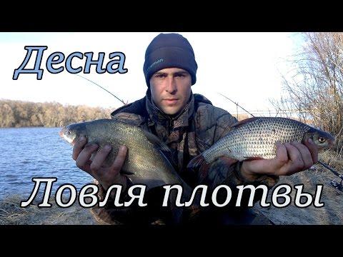 рыбалка в марте-апреле плотва