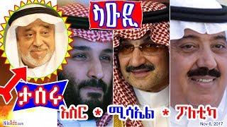 ሳዑዲ እስር * ሚሳኤል * ፖለቲካ - Saudi Politics - DW