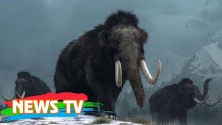 Video clip Top 7 sự thật đảm bảo bạn chưa nghe về thế giới sinh vật, không nghe quá phí!