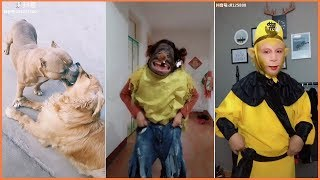 Top Funny Videos in Tik Tok Compilation