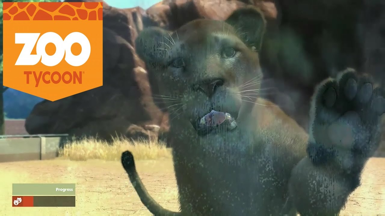 Zoo Tycoon Xbox One Gameplay Lion Interaction Using Kinect YouTube