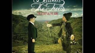 Watch Between The Trees Darlin video