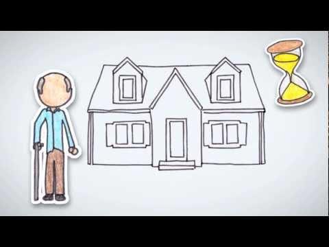 How to Build a Portfolio | by Wall Street Survivor