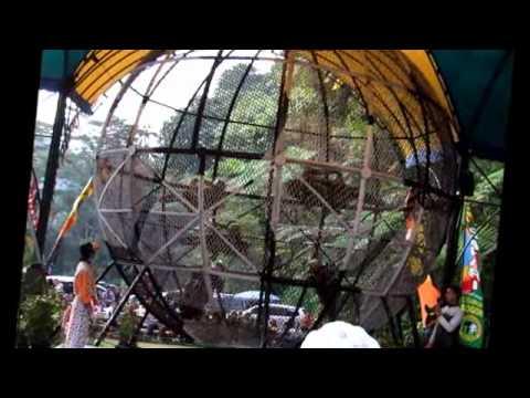 Globe Of Death -Taman Safari Indonesia, Cisarua