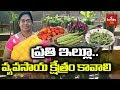 Vegetable Fruits Cultivation On Roof Terrace Garden By Usha In BHEL Hmtv Agri mp3