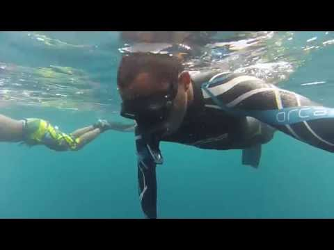 Freediving tugboat