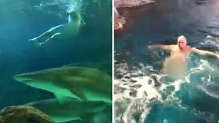 Naked Man Jumps Into Shark Tank at Aquarium