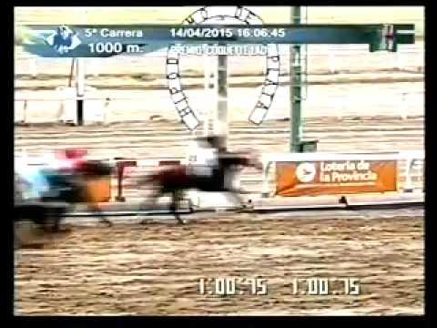 Vidéo de la course PMU PREMIO COQUETTE LADY
