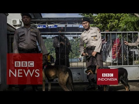 Indonesia Executions: What was their crime? BBC News
