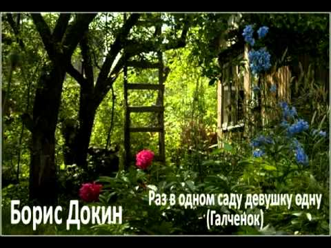 Раз в одном саду девушку одну(Галченок).mpg