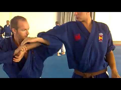 Goshin - kata luxaciones de codo.mp4