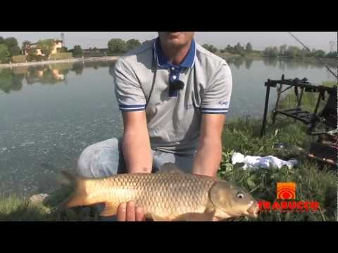 Trabucco TV - Feeder Fishing - Long Range Method Feeder - Laghi Mella
