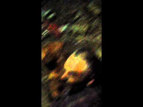 zoofilia en santiago chile - gente trastornada impotecia