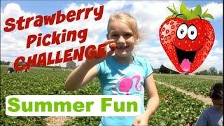 Strawberry Picking Challenge | Summer Fun