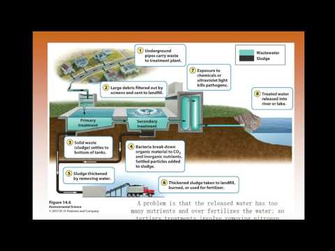 Apes Chapter 14 Water Pollution video