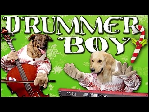 Little Drummer Boy - Walk off the Earth (Feat. Doggies) Music Videos