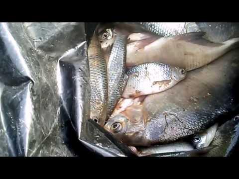 что нужно знать для рыбалки в астрахани