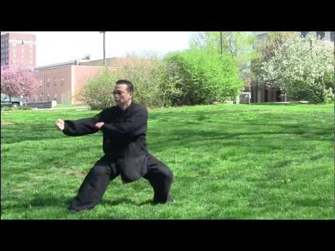 螳螂拳Praying Mantis Fist Kung Fu performed by Master Arthur Du Image 1