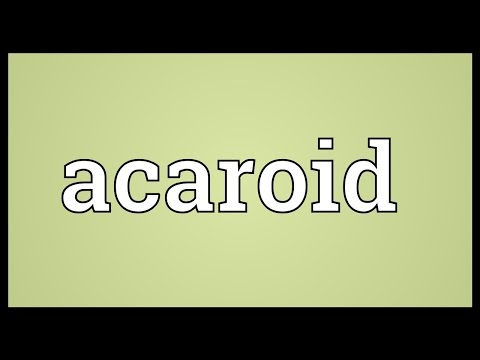 Header of acaroid