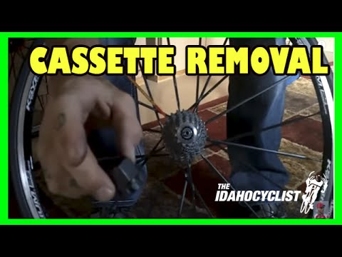 How To Remove A Bike Rear Wheel Cassette.  Cassette Removal.