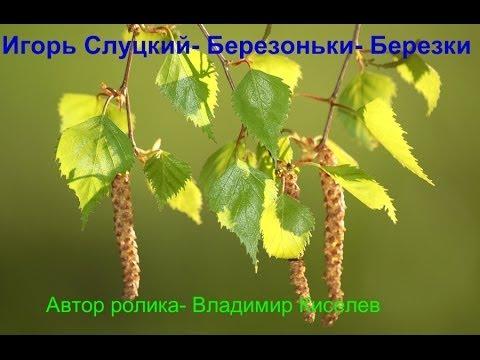 Слуцкий Игорь - Берёзоньки-берёзки