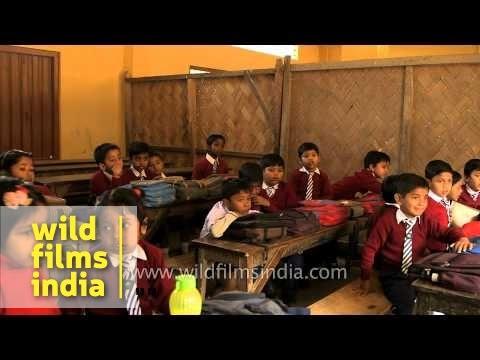 Indian primary school children