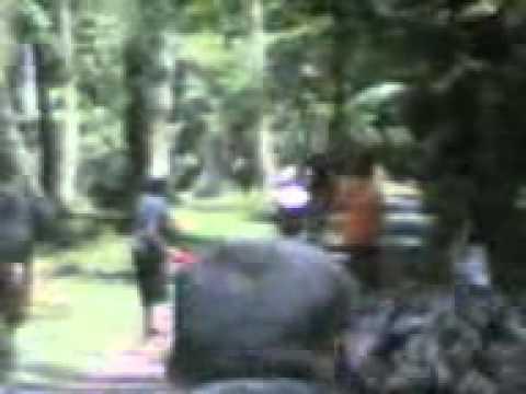 13042008(002).3gp video