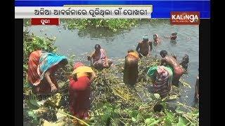 Puri: Women of Delanga block village clean abandoned pond to keep environment clean | Kalinga TV