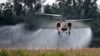 Kamov Ka-26 spraying corn field near Fadd, Hungary
