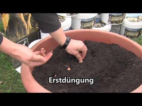 FloraPell Schafwollpellets - ökologischer Langzeitdünger Aus Schafwolle Imagefilm