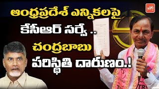 KCR Survey On Andhra Pradesh Elections 2019 | Chandrababu Naidu | CM KCR Vs CBN