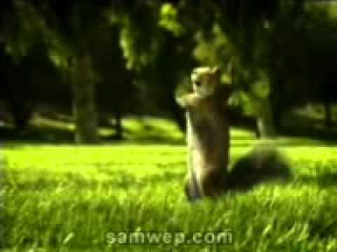 Nestle Kit Kat Ad 2010 (kit Kat Break Banta Hai)-(mobidreamz.in) video
