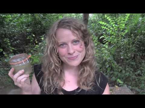 How to Make Herbal Body Scrubs (Vanilla Mint Honey Scrub)