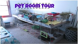 •Pet Room Tour• Sept. 2015