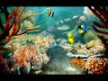 Tropical Fish Screensaver