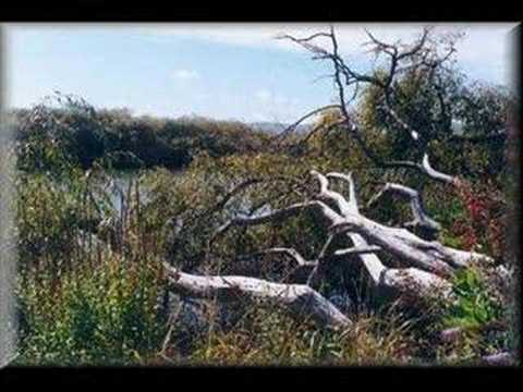 Schwenke Y Nilo - Lluvias Del Sur
