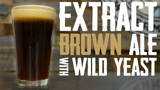 Extract Brown Ale With Wild Yeast: Homebrewing With A Log