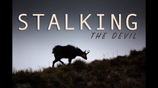 Stalking the Devil: Chamois mountain hunting by Altitude & Trails - Alpine Adventures