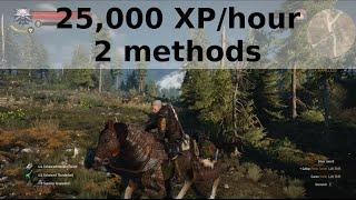 Witcher 3 - 25,000 XP per hour - 2 methods