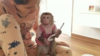 Monkey Baby Nui | Mom taught NUI to eat rice with a spoon