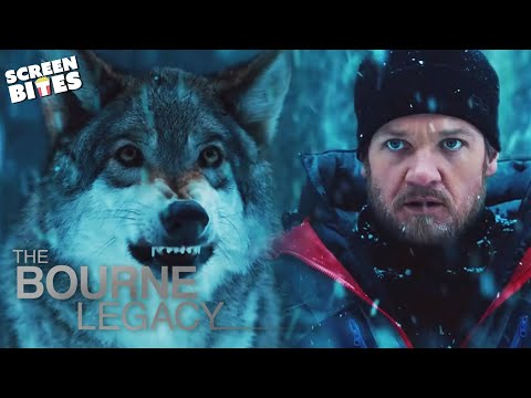 Bourne Legacy   The Wolf Scene   Jeremy Renner