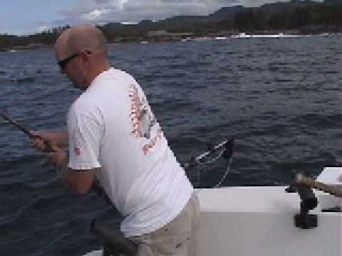 Chicken Halibut with Adrenaline Sportfishing, Prince Rupert