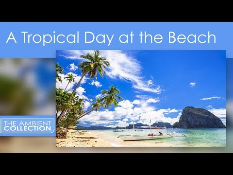 RELAXING BEACHES - A TROPICAL DAY AT THE BEACH  NOW IN HD ON DVD