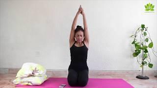 Yoga para principiantes clase 13