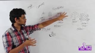 03. Angiosperm Families | আবৃতবীজী উদ্ভিদের গোত্র পরিচিতি | OnnoRokom Pathshala
