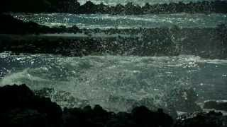 Watch Waterboys This Is The Sea video